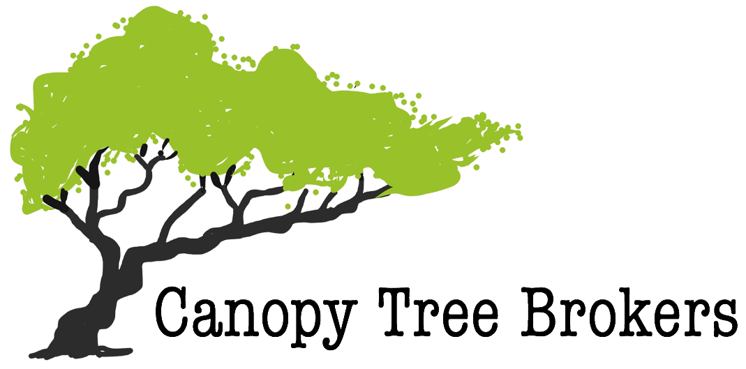 Canopy Tree Brokers Nursery - Wholesale Nursery in Lakeland Florida